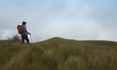 How to Walk With Trekking Poles