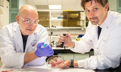 "​NTU Singapore scientists develop ""biorubber"" glue for faster surgical recovery and pain relief"