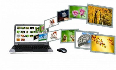 The Ultimate Guide to Reverse Image Search