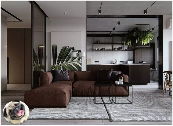 Contemporary Style for the Interior Design