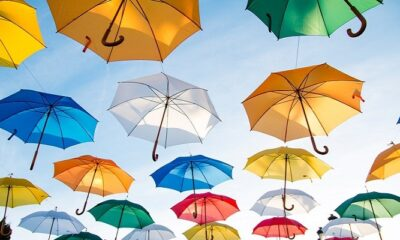 The Ultimate Guide To Buy Term Insurance Plans