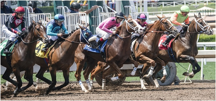 5 Grandest Annual Horse Racing Shows At Del Mar Racecourse