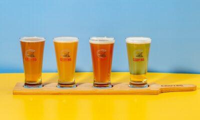Best Beer Brands