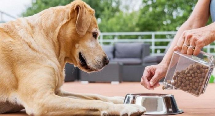 Pet-food